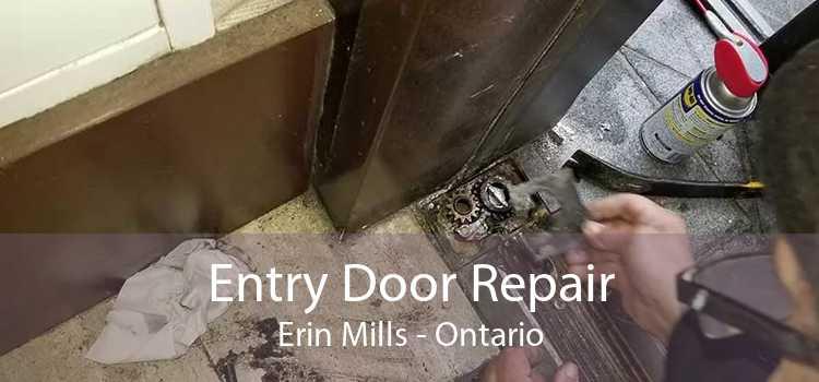 Entry Door Repair Erin Mills - Ontario