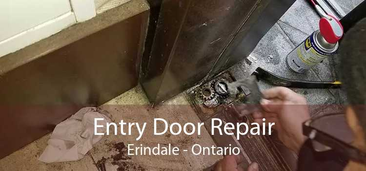 Entry Door Repair Erindale - Ontario